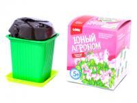 Наборы для  выращивания растений